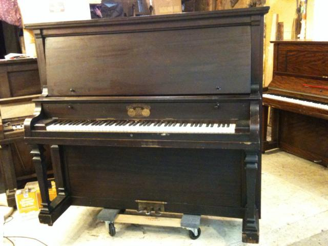 Photo of Schubert Duffiano  Upright #40839